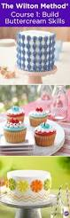 Pampered Chef Easy Accent Decorator Cupcakes by 122 Best Cakes Images On Pinterest Cakes Biscuits And Desserts