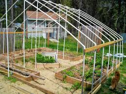 Gallery Of Simple Greenhouse Design - Fabulous Homes Interior ... Small Greenhouse Plans Howtospecialist How To Build Step By Green House Plan Ana White Our Diy Projects Amazing Decoration Residential Magnificent Breathtaking Floor Ideas Best Idea Home Design Homemade Low Cost Pallet Wood Greenhouse Viable Safe Year Greenhouses Forum At Permies Terrarium Designed By Atelier 2 For Design Stockholm Room Creative Rooms Home Interior Simple Cool Garden Youtube Winterized Raised Bed Free To View Cottage New Under