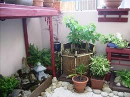 parlons bonsai tsuboniwa