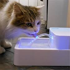 water for cats 1 8l led uv sterilization automatic pet water