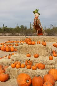 Macdonald Ranch Pumpkin Patch Hours by 5 Fun Fall Events In October