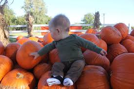 When Does Carmichaels Pumpkin Patch Open by Tony And Beth Online October 2011