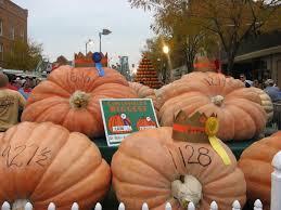 Pumpkin Picking Nj by Hocking Hills Farm And Harvest Festivals The Chalets
