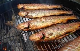 comment cuisiner la truite truites mouchetées et grises enrobées de prosciutto au bbq dans