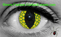 Theatrical Contacts Prescription by Fashion Contact Lenses The Worlds Largest Online Cosmetic