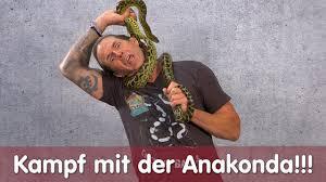 kf mit der anakonda ich werde zig mal gebissen reptil tv folge 117