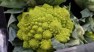 100 Natural Geometry The Natural Geometry Of Romanesco Broccoli Woahdude