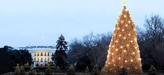 Tumbleweed Christmas Trees by America U0027s Best Tree Lighting Ceremonies Wheretraveler