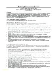 Sample Vice President Of Marketing Resume Digital Template And For Executive