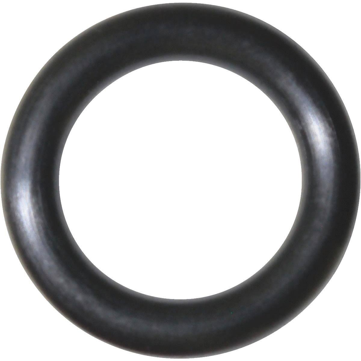 Danco Perfect Match O-Ring - 13/16in x 9/16in x 1/8in