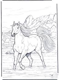 The Realistic Horse Coloring Page Of A Girl Riding Majestic Looking Is