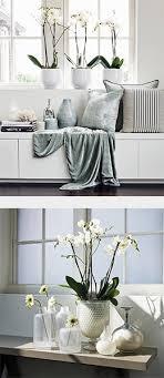 Modern Kitchen Decor Designs And Renovations