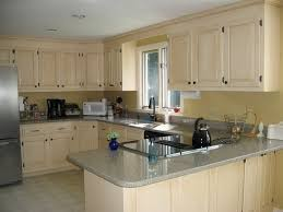 Best Color For Kitchen Cabinets 2014 by Spray Painting Kitchen Cabinets Modern Kitchen 2017