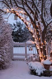 Snow Lights Back To NatureLet It SnowWinterWinter Wonderland