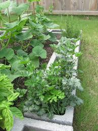 Cinder Block Garden Interiors Design
