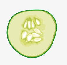 Green cucumber slices Green Cucumber Slice PNG Image and
