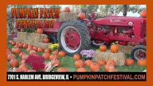 Coconut Grove Pumpkin Patch by Pumpkin Patch Festival 2017 Commercial 30 Sec English Final Youtube