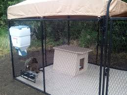 Dog Kennel Flooring Whosale Custom Logo Large Outdoor Durable Dog Run Kennel Backyard Kennels Suppliers Homestead Supplier Sheds Of Daytona Greenhouses Runs Youtube Amazoncom Lucky Uptown Welded Wire 6hwx4l How High Should My Chicken Run Fence Be Backyard Chickens Ancient Pathways Survival School Llc Diy House Plans Deck Options Refuge Forums Animal Shelters The Barn Raiser In Residential Industrial Fencing Company