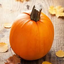 Eden Organic Pumpkin Seeds Where To Buy pumpkin seeds