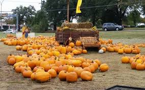 Pumpkin Patch Fort Worth Tx by 2016 Mansfield Area Pumpkin Patch U0026 Fall Events Guide Mansfield