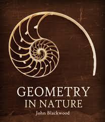 100 Natural Geometry In Nature NHBS Academic Professional Books