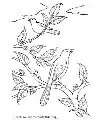 Bible Lesson Coloring Page Sheets Thank You For The Birds That Sing Sunday School Activity