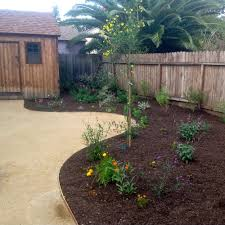 A Decomposed Granite (dg) Path With Mulch And Natives - Yelp Simple Design Crushed Granite Cost Gdlooking Decomposed Front Yard Landscaping With Pathways And Patios Grand Gardens Granite Archives Dianas Designs Austin Backyards Terrific Landscape Tropical Yard Landscape Xeriscape Theme With Decomposed Crushed Base Capital Upkeep Parking Space Plate An Expensive But New Product Is Out On The Market That Creates A Los Angeles Ccymllv 11 Install Youtube Ambience Garden Modern