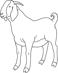 Goat Black And White Clipart