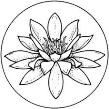 Water Lily Blossom Coloring Page From Category Select 20946 Printable Crafts Of