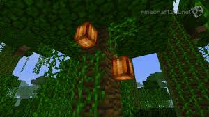 Minecraft Melon Seeds by Growing Crops Minecraft 101