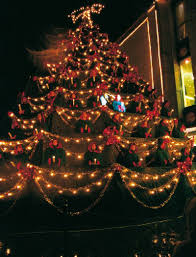 Most Common Christmas Tree Types by Christmas In Slovenia Government Of The Republic Of Slovenia