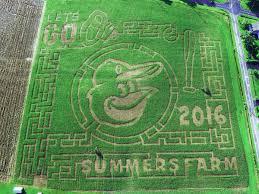 Great Pumpkin Patch Frederick Md by Summers Farm Summersfarm Twitter