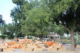Pumpkin Patch Fresno Clovis by Parks Zoos Museums U2014 Merced County Events