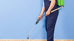 How Much Does Pest Control Service Cost? | Angie's List Bugster Bugs Pest Control Wordpress Theme For Home Mice Rodent Nj Get Free Inspection By Licensed Layla Mattress Review Reasons To Buynot Buy 2019 Mortein Powergard Flea Crawling Insect Bomb 2 X 150g 1count Repeller 7 Steps A Healthy Lawn Pride Holly Springs Sameday Service Triangle Family Dollar Smartspins In Smart Coupons App Spartan Mosquito Eradicator Yards Pack Rottler Solutions Experts In St Louis