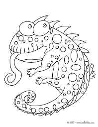 Funny Turkey Coloring Pages Book Reddit Thanksgiving Chameleon Picture Page Animal Reptile Full Size