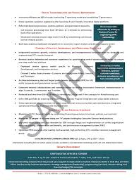 CEO Resume Sample Chief Operating Officer Executive Manufacturing