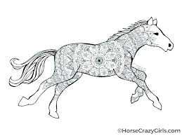 Coloring Pages Horses Printable Realistic Horse Online Of Sidebar
