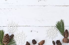 Desk Tree Branch Winter Plant Leaf Flower Rustic Pattern Produce Holiday Christmas Flora Material Pine Cone