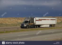 Gold Freightliner Semi-Truck Pulling A White