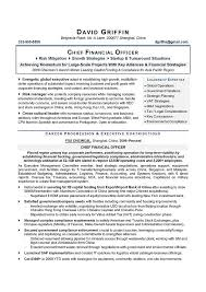 CFO Sample Resume Chief Financial Officer Executive Writer