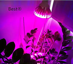 best to buy皰 spectrum 10w led grow light bulb for veg and
