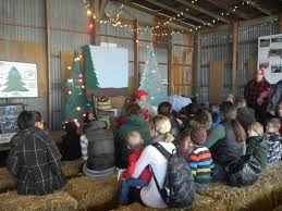 Silveyville Pumpkin Patch Dixon Ca by Our Dream X3 Silveyville Christmas Tree Farm