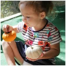 Norms Pumpkin Patch 2015 by Pumpkin Patch Sensory Bin Preschool Matching Fun