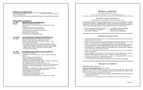 Sales Management Resume Example