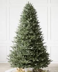 BH Balsam Fir Tree Child 1