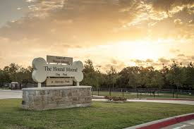 Hound Mound Dog Park
