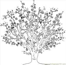To Draw A Cherry Tree Step 4 Coloring Page For Kids And Adults From Food Fruits Pages Cherries