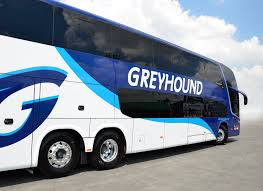 Does Greyhound Bus Have Bathrooms by Travel Pass Greyhound