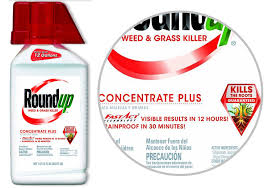 Roundup Weed And Grass Killer Concentrate Plus 5005610