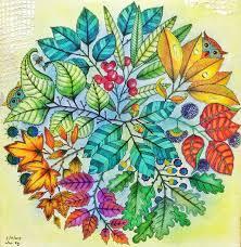 25 Trending Secret Garden Coloring Book Ideas On Pinterest